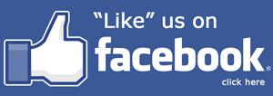 facebook-likeWP